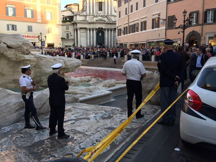 Police have arrested a protester for throwing red paint into the Trevi fountain