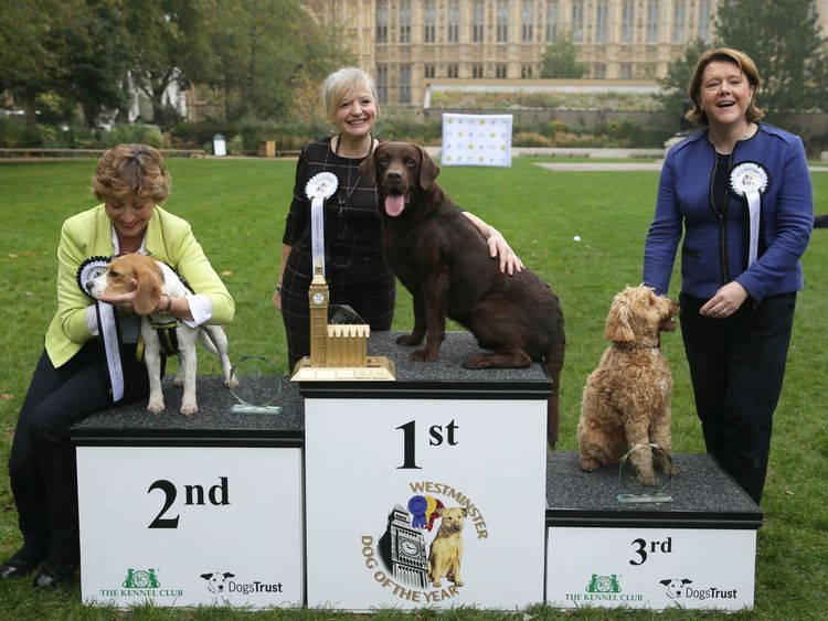 Tracy Brabin, MP for Batley and Spen with Labrador Rocky (centre) is announced as winner of the 25th Westminster Dog of the Year competition, with second placed Rebecca Pow with Dogs Trust rescue dog Beagle Bonnie (left), and third place Maria Miller with Cocker Spaniel/Poodle cross Ted at the end of the competition organised jointly by Dogs Trust and The Kennel Club, London.