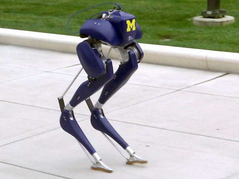 Robot that could save lives put through paces Skynews-cassie-robot_4143188