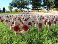 Poppy crosses laid at the Field of Remembrance at the National Memorial Arboretum in Alrewas, Staffordshire, on Remembrance Sunday, as the nation will pay silent respect to the country's war dead today in a Remembrance Sunday service led by the Prince of Wales.