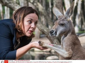 'I'm a Celebrity... Get Me Out of Here!' TV Show, Series 17, Currumbin Wildlife Sanctuary, Australia - 21 Nov 2017