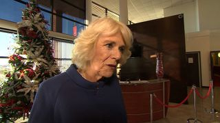 The Duchess of Cornwall said the engagement is 'a real bit of good news'
