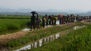 Hundreds of thousands of Rohingya have fled Myanmar