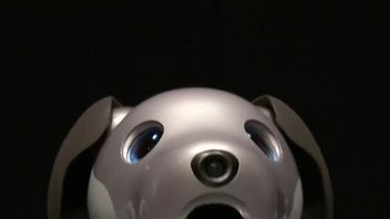Aibo, the robot puppy powered by canine AI