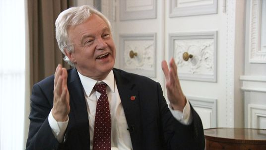 David Davis speaks to Sky News