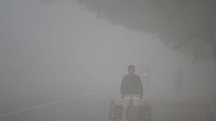An Indian labourer drives a rickshaw amid heavy smog in New Delhi