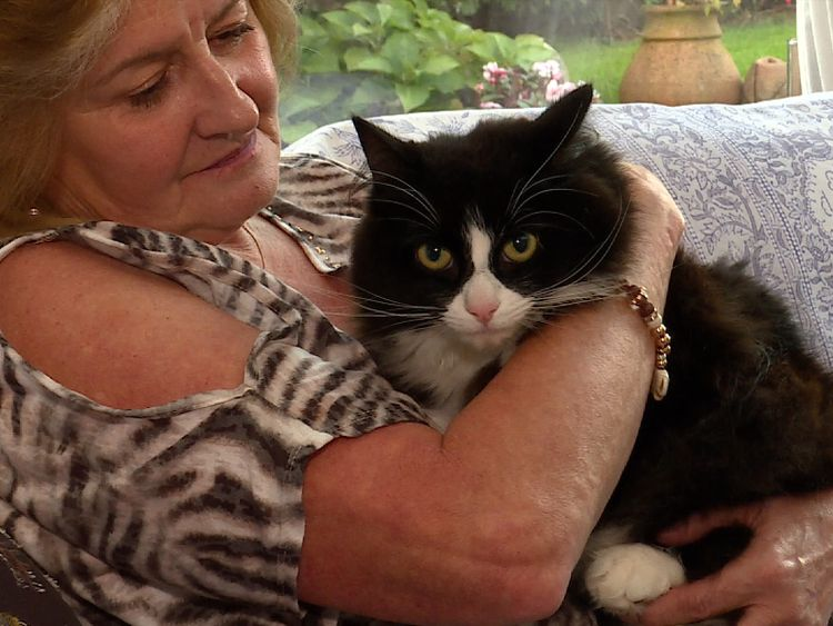 Anne lost one of her cats to the killer this summer and says she will 'never forgive him'