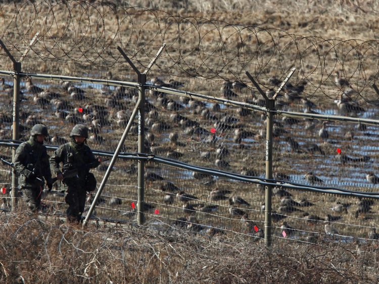 More than 1,000 North Koreas illegally cross into South Korea every year, but the heavily militarised DMZ makes it difficult