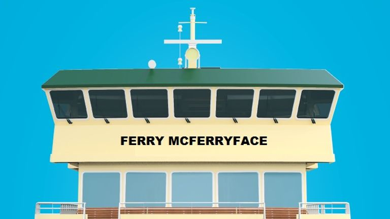 It may have lost out to Boaty McBoatface in a public vote, but Ferry McFerryface has been chosen as the name of a new ferry in Sydney. Pic: Transport NSW