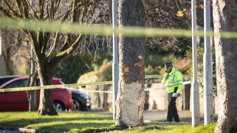 Police at the scene where a stolen car crashed into a tree (centre) in Stonegate Road, Leeds.