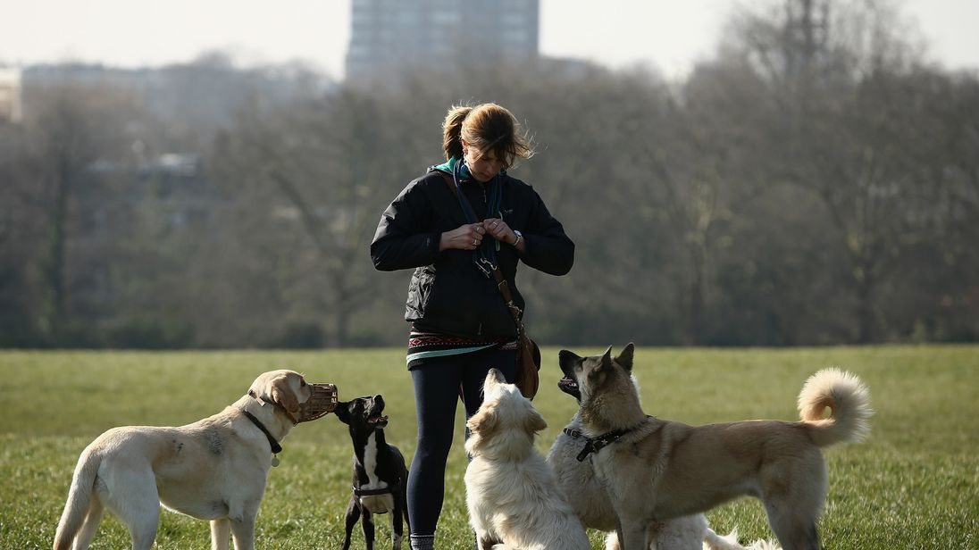 Dog walkers, buskers, rough sleepers and groups are being unfairly fined