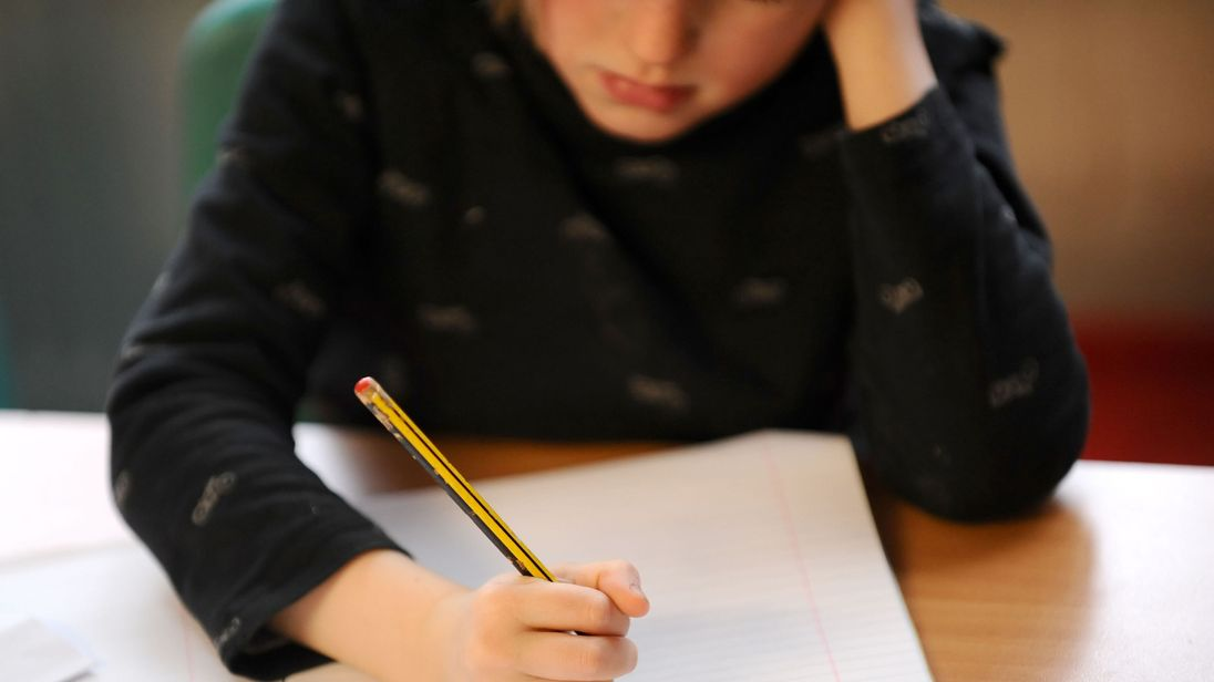 Government pledges mental health support in schools