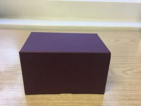 The ashes of the twins were contained in a maroon box
