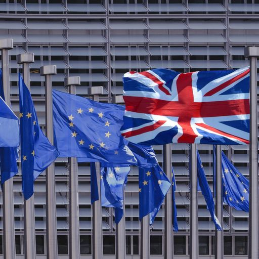 Brexit: The jargon and key terms explained