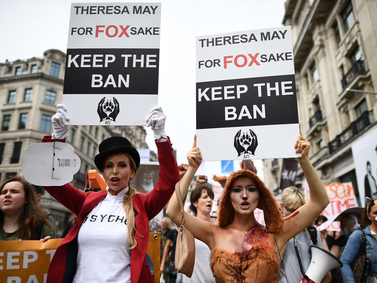 Mrs May's support for fox hunting prompted protests