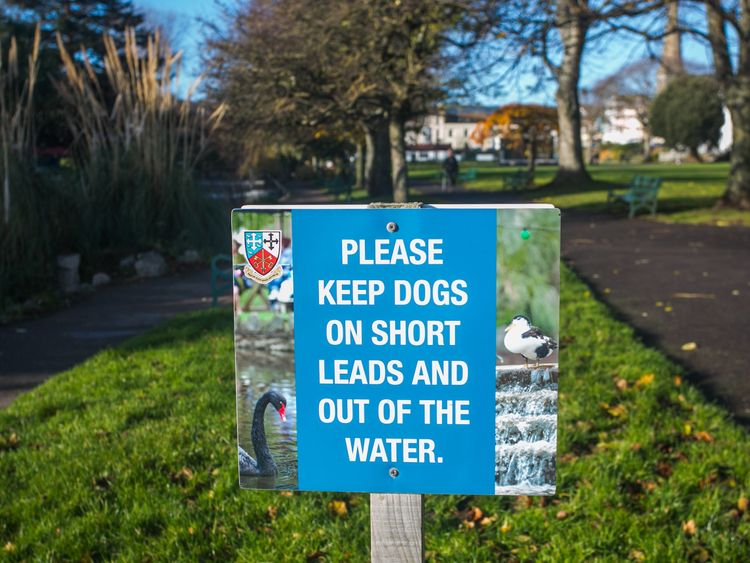 One of the signs in Dawlish. Pic: SWNS