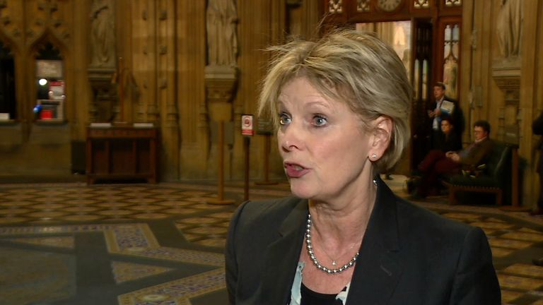 Conservative MP Anna Soubry voted against the government