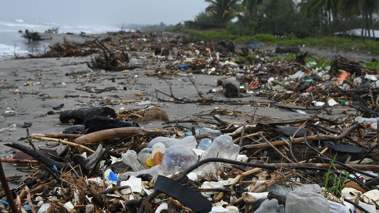 Environment ministers pledged to go towards a 'pollution-free planet'