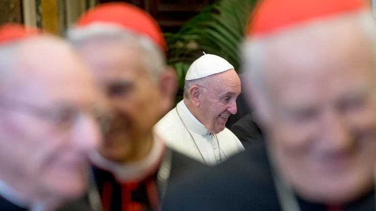 Pope Francis greets cardinals in the Clementine Hall at the Vatican