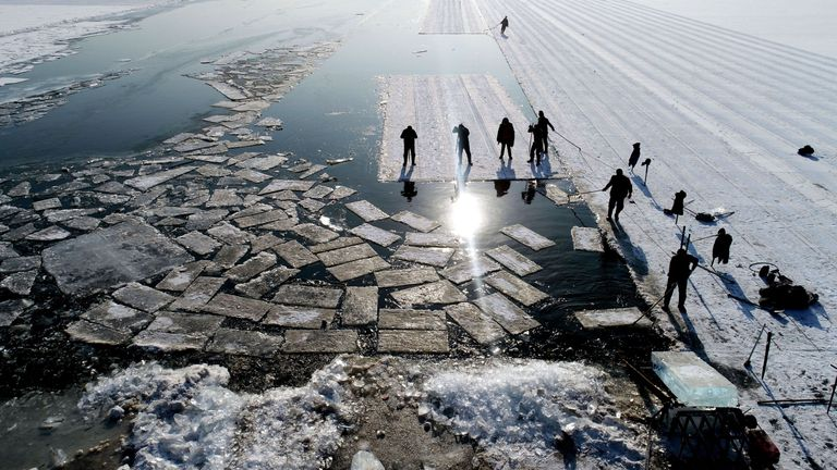 Floating ice blocks cut from the frozen surface of Xiuhu lake in Shenyang, northeastern China's Liaoning province
