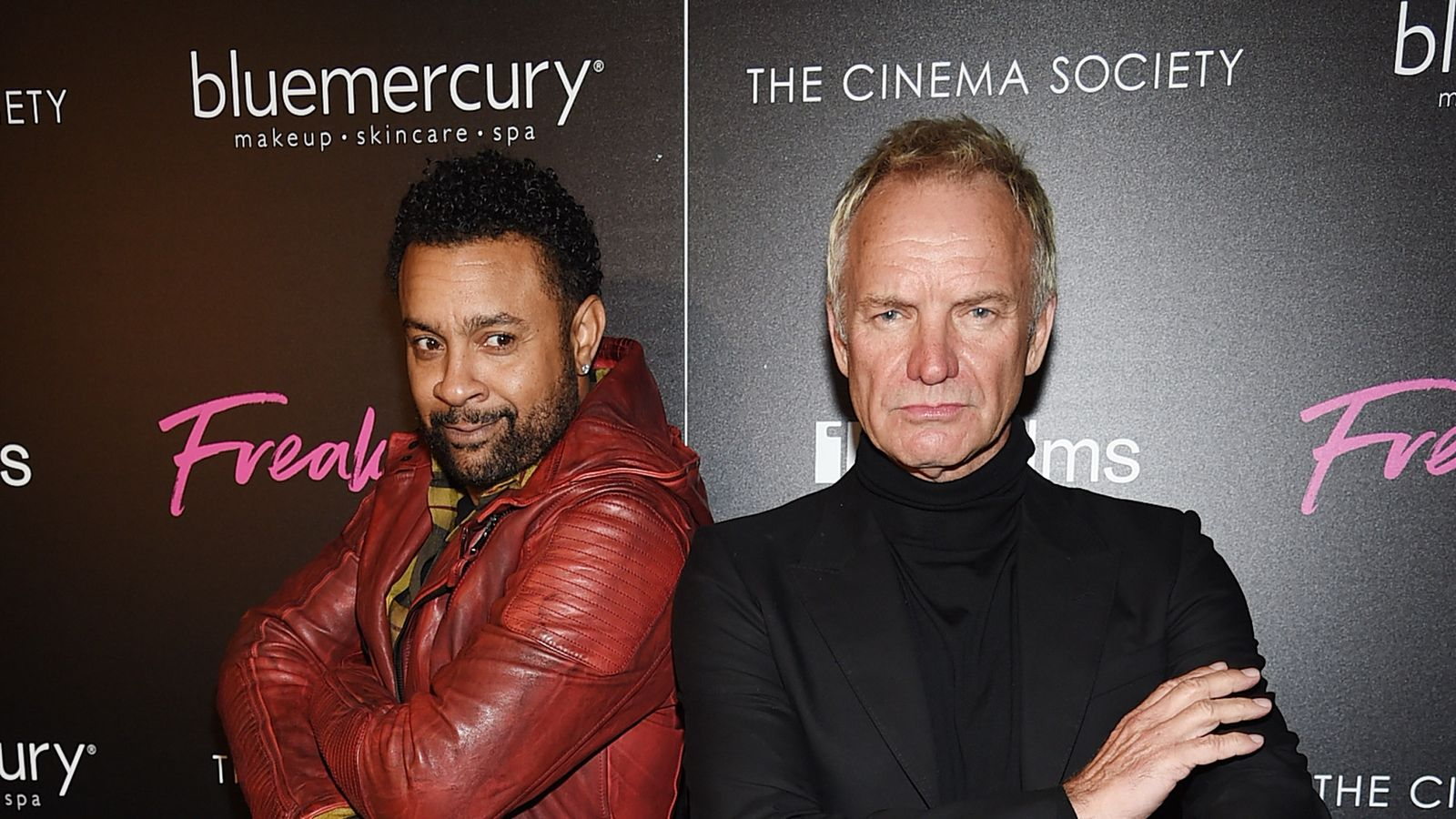 Sting and Shaggy to release Caribbean collaboration