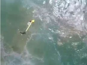 Teenagers saved from sea in Australia in world-first drone rescue