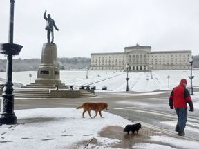 A man walks his dogs through the snow at Parliament Buildings on the Stormont Estate in Belfast
