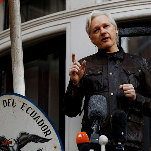 Julian Assange rejects court translator not fluent in Australian