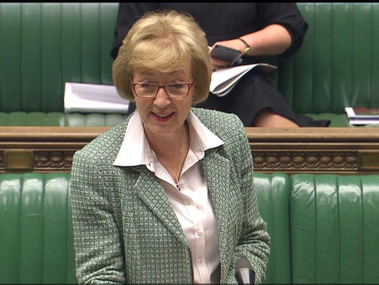 Mrs Leadsom told MPs there could be no blank cheque for this work