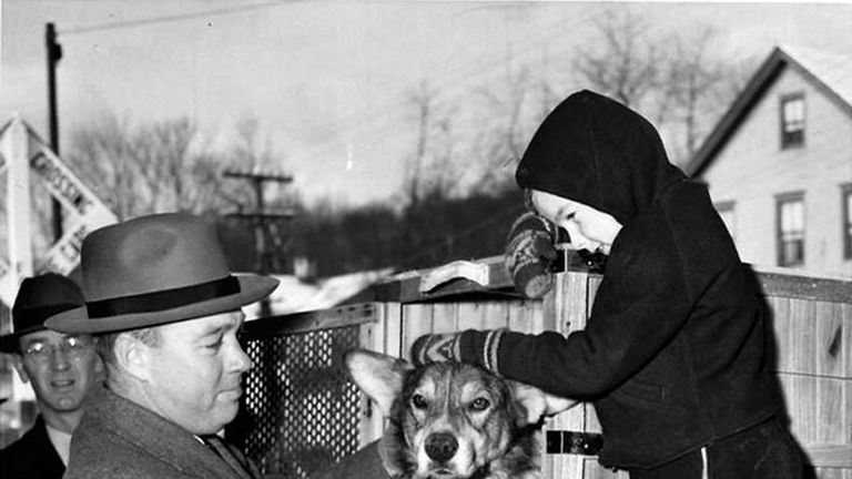 The dog ran towards enemy fire in 1943