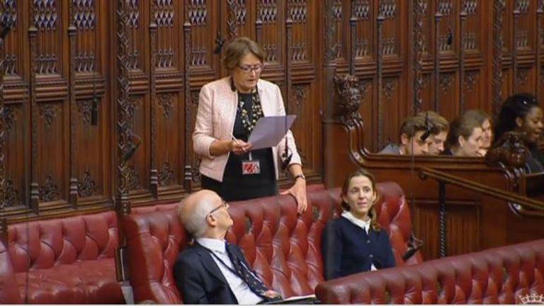 Baroness Jenkin of Kennington