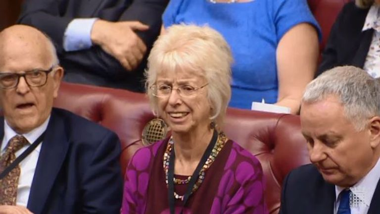 Baroness Lister in the House of Lords