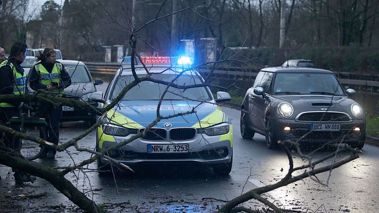 A fallen tree on a road in Cologne after the region was hit by 'Burglind'