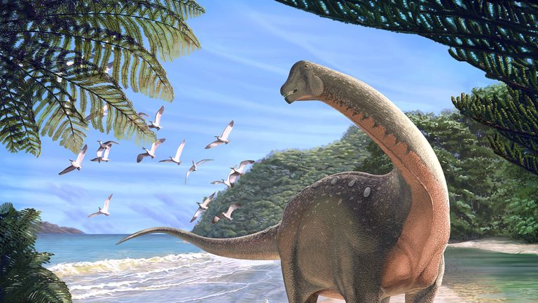 Life reconstruction of the new titanosaurian dinosaur Mansourasaurus shahinae on a coastline in what is now the Western Desert of Egypt approximately 80 million years ago. Credit: Andrew McAfee, Carnegie Museum of Natural History