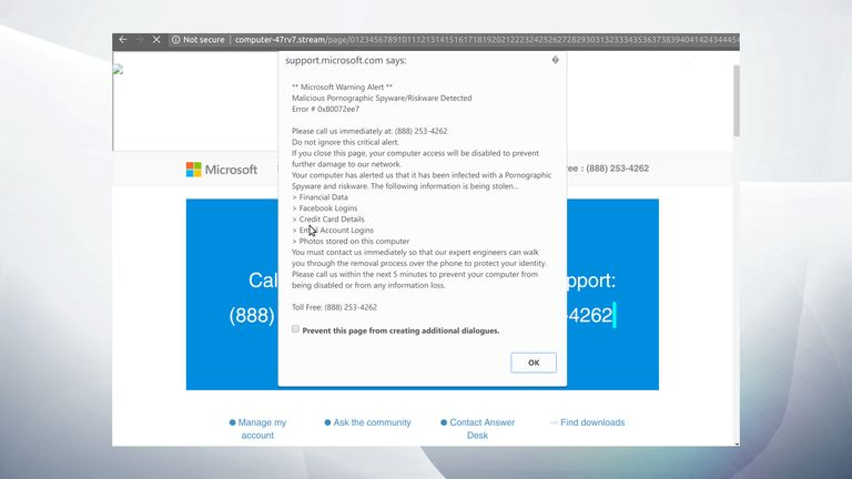 A fake security support pop-up. Pic: Confiant