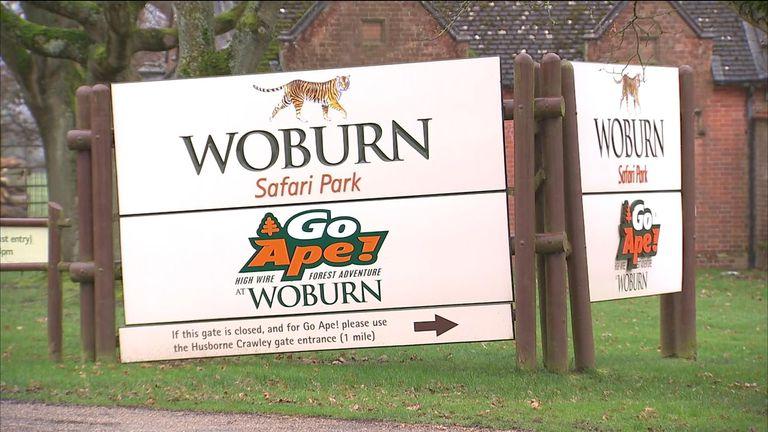 Woburn Safari Park, where a fire killed 13 monkeys