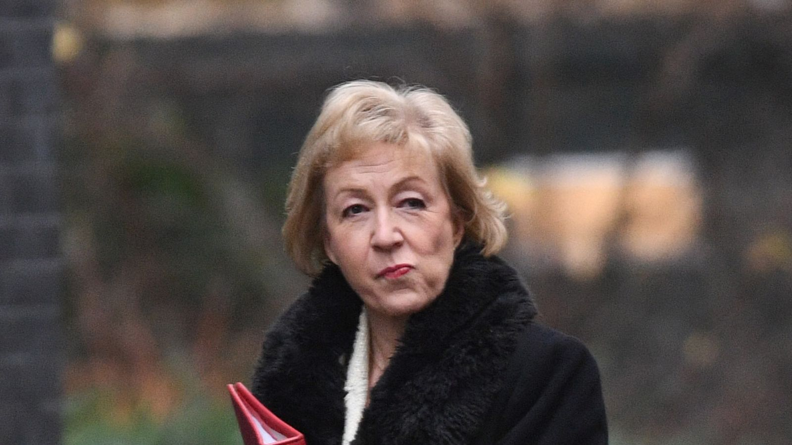 Anastasia Deeva Leaked newsody : leadsom 'told cabinet she hated chequers deal'