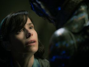 Sally Hawkins' character forges a bond with a mysterious creature