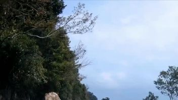A driver in Taiwan had a close call  when a large boulder fell just seconds from his car on a highway.