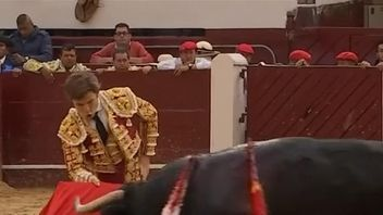 Spanish matador Julian Lopez was gored during a bullfight in Bogota, Colombia