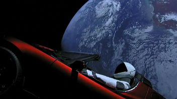 Elon Musk's Tesla, with dummy driver, floating in space