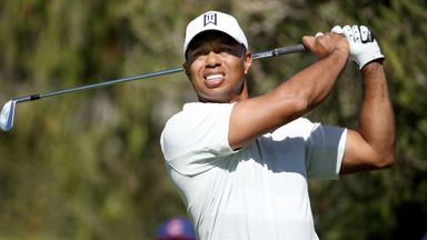 Woods named Ryder Cup vice captain