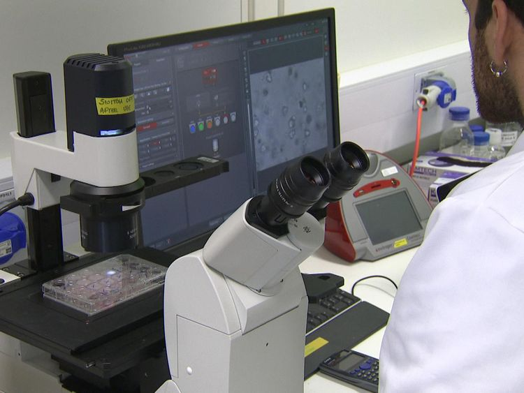 Scientists tested the mini tumours in a lab - and tested them against dozens of drugs to find the best possible treatment