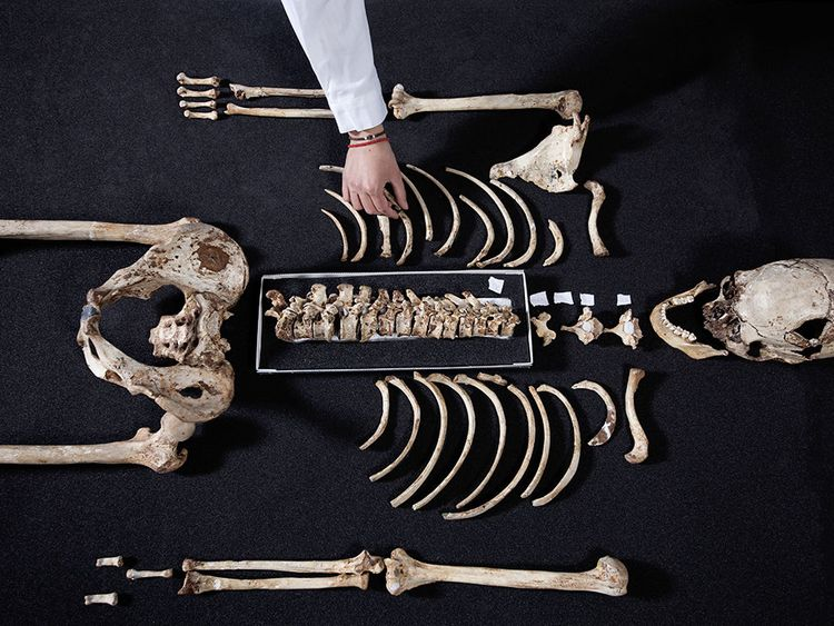 Cheddar Man is Britain's oldest complete skeleton