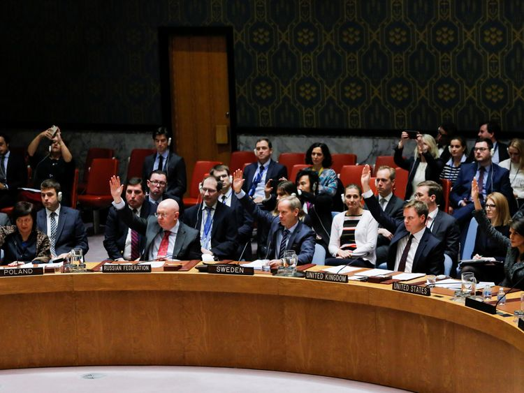 Members of the UN Security Council vote for ceasefire to Syrian bombing