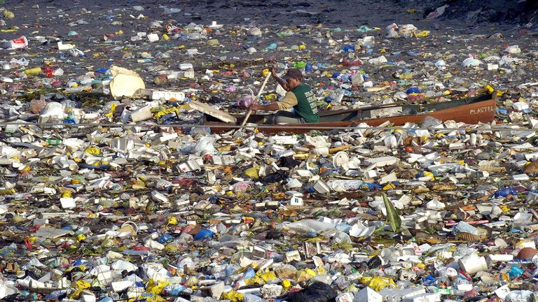 Straws are a big pollutant of oceans