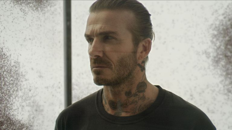 David Beckham stands in a glass box with mosquitoes