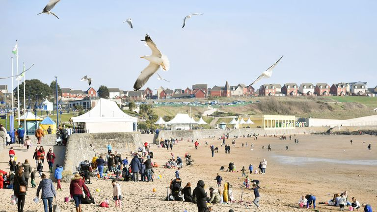 Seagulls circle above people enjoying the beach during sunny weather at Barry Island in South Wales as temperatures reach single figures