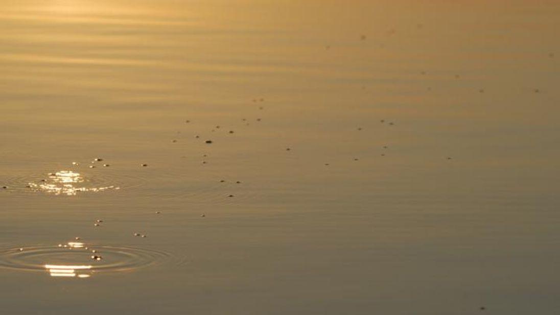 Methane bubbles to the surface Lake Kariba. Pic: Christian Dinkel