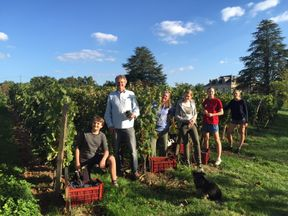 Gavin and Angela Quinney with Tom (left), Sophie, Amelia and Georgie (right) during the harvest at Château Bauduc, Créon, near Bordeaux.